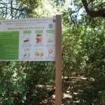 Alla scoperta del Parco Pianelle. Domenica escursione speleo-naturalistica