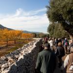 Gli appuntamenti del weekend con i Millenari di Puglia