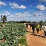 Gli appuntamenti del weekend con Millenari di Puglia 22-23 marzo 2014
