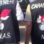 carabinieri- nas