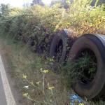 EcoTyre leader nella gestione degli pneumatici fuori uso. Grande risposta dalla Puglia