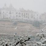 Lunedì 9 febbraio scuole chiuse: c'è l'ordinanza del sindaco Scatigna