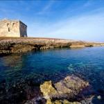 """Torre Guaceto, 23 ettari di terreni """"svenduti"""" dal Demanio"""