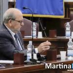 Elezioni, TAR rigetta il ricorso della Pulpito: Donnici resta consigliere. PD soddisfatto
