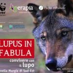 """Convivere coi lupi nella Murgia. Venerdì il workshop """"Lupus in fabula"""""""