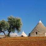 Unione dei comuni della Valle d'Itria: possibile carta d'intenti