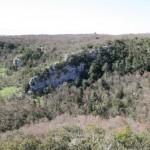 Bosco delle Pianelle: trekking tra speleo, natura e storia