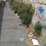 """Via Fratelli Caramia, Miali: """"Degrado in pieno centro. Si intervenga presto"""""""