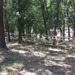 Parco Pianelle, online il bando di gestione