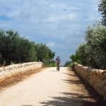 Discovering Puglia: dal 20 settembre all'1 novembre percorsi a piedi e in bici