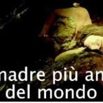 """Il Lions Club Ostuni alla scoperta della """"Madre più antica del Mondo"""""""