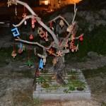 Ostuni Green Riot torna all'attacco, addobbato per Natale l'albero di Viale Oronzo Quaranta