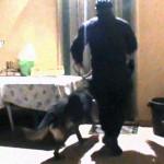Spaccio di droga a Brindisi e in Valle d'Itria. Arrestate 14 persone