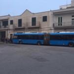 Trasporto scolastico: Scatigna chiama a raccolta genitori e studenti