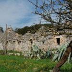 Torna la Giornata delle Oasi. Domenica appuntamento a Monte Sant'Elia