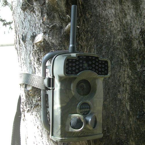 foto trappole