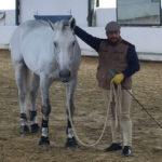 Un ostunese a Rio2016. La favola di Francesco Melpignano, istruttore equestre