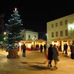 In arrivo gli alberi di Natale per le attività commerciali