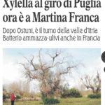 Xylella a Martina Franca. L'allarme della Gazzetta