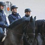 cavalli-murgese-quirinale