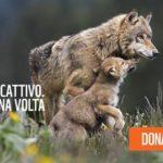 """WWF Trulli e Gravine: """"inutile creare allarmismi"""""""