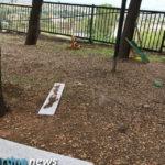 Distrutti i giochi nel dogpark al Carmine. Nessun colpevole: le videocamere sono spente