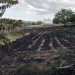 Incendio all'orto sociale. E se fosse semplice speculazione edilizia?