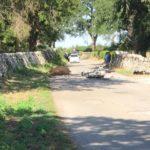 Incidente tra una moto e una mucca sulla Martina-Noci: morto il motociclista