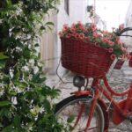 Fase 2. Alberobello: il rione Monti torna a vivere
