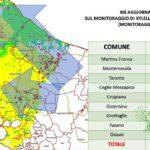 Xylella. trovati 229 nuovi ulivi infetti: 29 a Cisternino, 13 a Ceglie Messapica e 5 a Martina